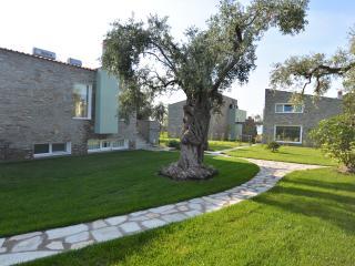 Villa Arhondula - Skala Prinou vacation rentals