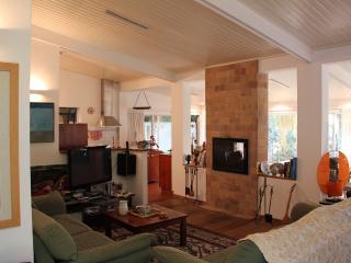 Country-style Villa in Herzliya Pituach - Herzlia vacation rentals