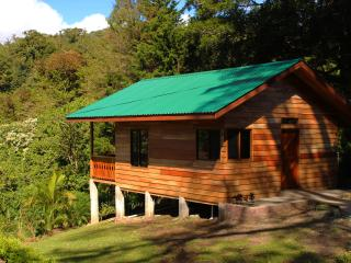 Cabaña Hoja Verde - Nuevo Arenal vacation rentals