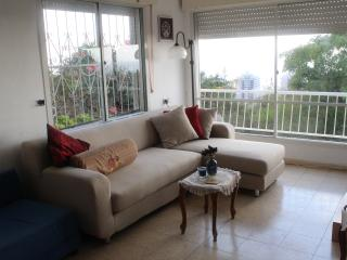 Wonderful 3 bedroom Condo in Haifa - Haifa vacation rentals