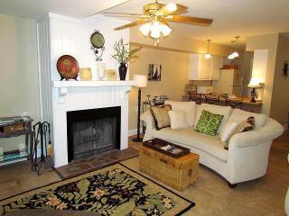 270 Driftwood Villa - Wyndham Ocean Ridge - Edisto Beach vacation rentals