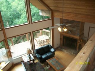 Asheville Area Mountain Chalet--Blue Ridge Mtn. - Asheville vacation rentals