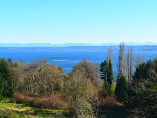 Luxury Entertainment Home with Ocean View - Vashon vacation rentals