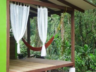 Casa Lina Jungle Lodge - Limon vacation rentals