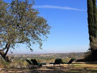 Hilltop Hideaway in Downtown with it all, Pool, Spa and Views! - Paso Robles vacation rentals
