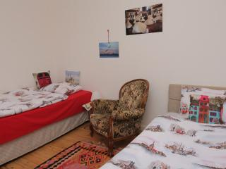 CİHANGİR SHARED2 in 2 person roomCENTRALRETROCLEAN - Istanbul vacation rentals