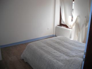 Au Pied du Château Suite King Henry - Sarrebourg vacation rentals