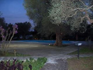 villa con piscina immersa in uliveto secolare - Monteroni di Lecce vacation rentals