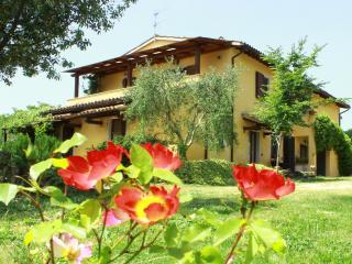 la  casa di gelsomino - appartamento blu - Massa Martana vacation rentals