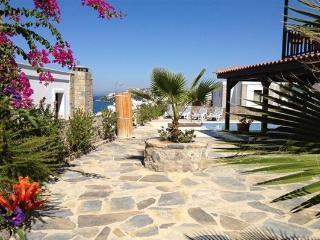 Beautiful Villa with Internet Access and Dishwasher - Gundogan vacation rentals