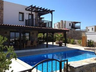 Beautiful Villa with Internet Access and Dishwasher - Gundogan vacation rentals