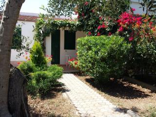 2 bedroom Resort with Internet Access in Vieste - Vieste vacation rentals