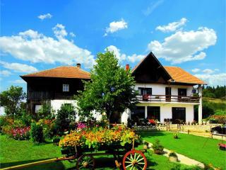 Smestaj na Goliji - Vila Selana - Raska vacation rentals