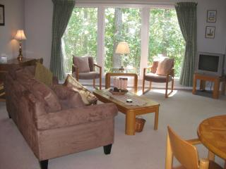 NEW BERN/FAIRFIELD HARBOUR Vacation Condo - New Bern vacation rentals