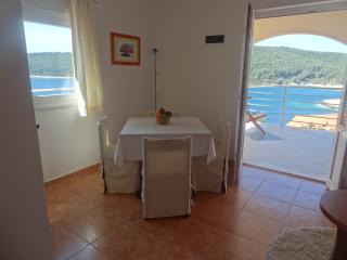 Lovely apartment 3+1 near the sea with terrase L - Vela Luka vacation rentals