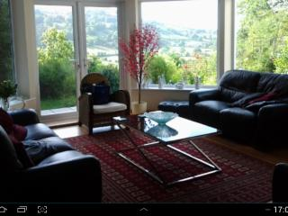 3 bedroom Cottage with Internet Access in Bodfari - Bodfari vacation rentals