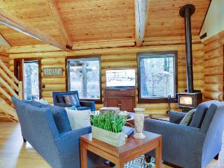 Beautiful, dog-friendly cabin on the river with private hot tub & shared pool - Brightwood vacation rentals