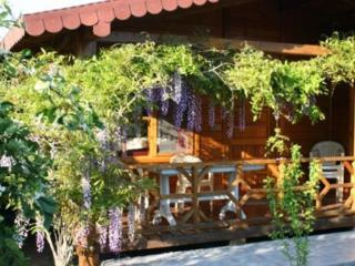 Windmolen Bungalow with Shared outdoor pool - Cirali vacation rentals