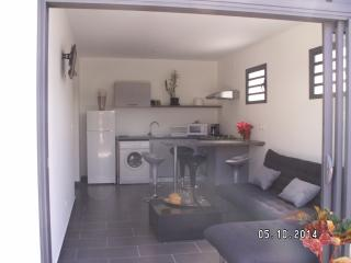 2 bedroom Condo with Internet Access in Etang Sale Les Bains - Etang Sale Les Bains vacation rentals