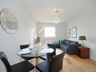 AMAZING 2 Bedroom Hyde Park Rental with TERRACE!! - London vacation rentals