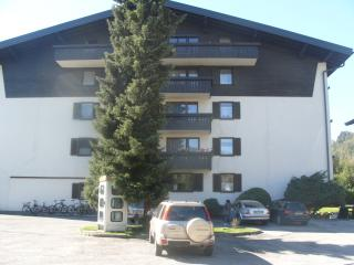 Apartment Areitbahn - Zell am See vacation rentals