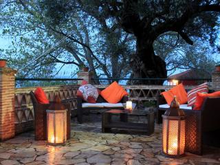 Tonia apartments-Thea house - Zakynthos vacation rentals