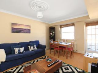 HYDE PARK VIEWS - Private balcony! Seconds to tube - London vacation rentals