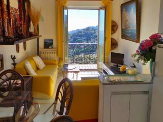 Galletti, Panoramic view with garden and parking - Rapallo vacation rentals