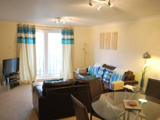Lovely Condo with Internet Access and Cleaning Service - Ovingdean vacation rentals