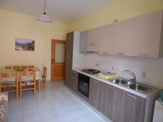 Nice Condo with Parking and Grill - Palinuro vacation rentals