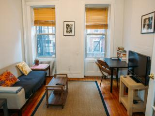 Cute 1BR in Chelsea - New York City vacation rentals