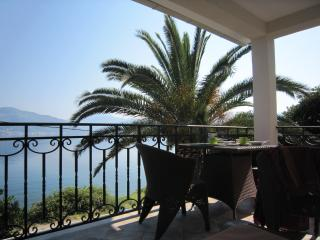 Spacious villa with a sea view terrace - Krasici vacation rentals