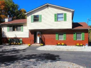 NATURE & RELAX, HOT TUB, POOL TABLE, WATER PARK - Mount Pocono vacation rentals
