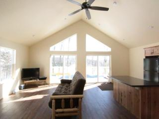 New Construction- Long Lake, 687ft of private fron - Gleason vacation rentals