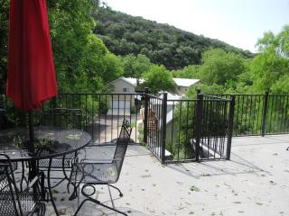Cabin on the Hill! Guadalupe RIver/River Road! - New Braunfels vacation rentals