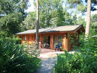 Holiday House Europarcs Landgoed Hommelheide - 24504 - Maastricht vacation rentals