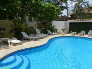 2/2 condo w pool & walk to beach - $125 per night - Tamarindo vacation rentals