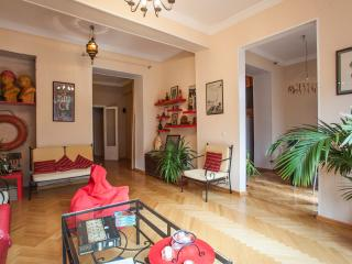Friendly Flat in the Center - Tbilisi vacation rentals