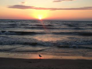 ANGLERS HAVEN by Lake Erie.Presque Isle State Park - Erie vacation rentals