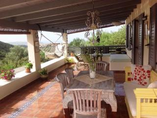 Perfect Villa with Internet Access and A/C - Argostolion vacation rentals