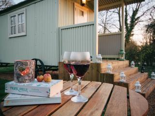 Glamping - Snug Shepherd Hut - Cow Dale, near York - Bishop Wilton vacation rentals