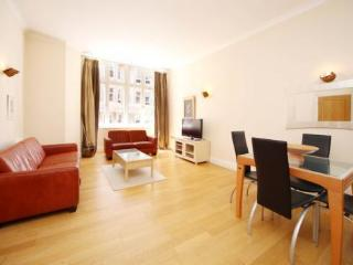 Beautiful Apartment  in Covent Garden Riverside - London vacation rentals