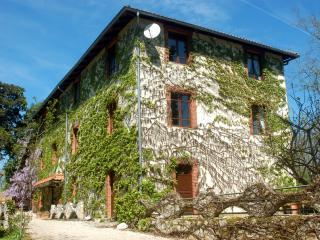 Figuier at Le Moulin de Samaran a country watermil - L'Isle-en-Dodon vacation rentals