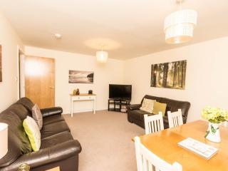 MIA Edinburgh Apartment - Edinburgh vacation rentals