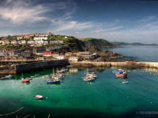 Mevagissey mariners cottage waterside - Mevagissey vacation rentals