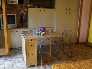 Sunny 1 bedroom Menaggio Condo with Linens Provided - Menaggio vacation rentals