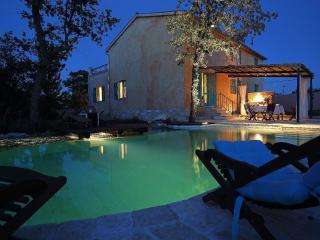 Nice 1 bedroom Villa in Glavani - Glavani vacation rentals