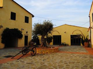 2 bedroom Townhouse with Internet Access in Montefiridolfi - Montefiridolfi vacation rentals