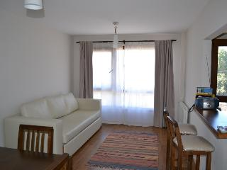 Nice Condo with Internet Access and Central Heating - San Carlos de Bariloche vacation rentals