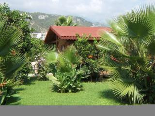 Charming Windmolen Bungalow 100m from the beach - Cirali vacation rentals